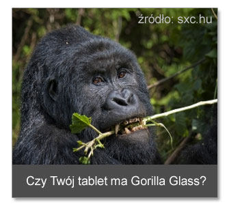 Szkło Gorilla Glass